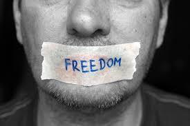 Sloboda govora, građanski neposluh i satira u digitalno doba